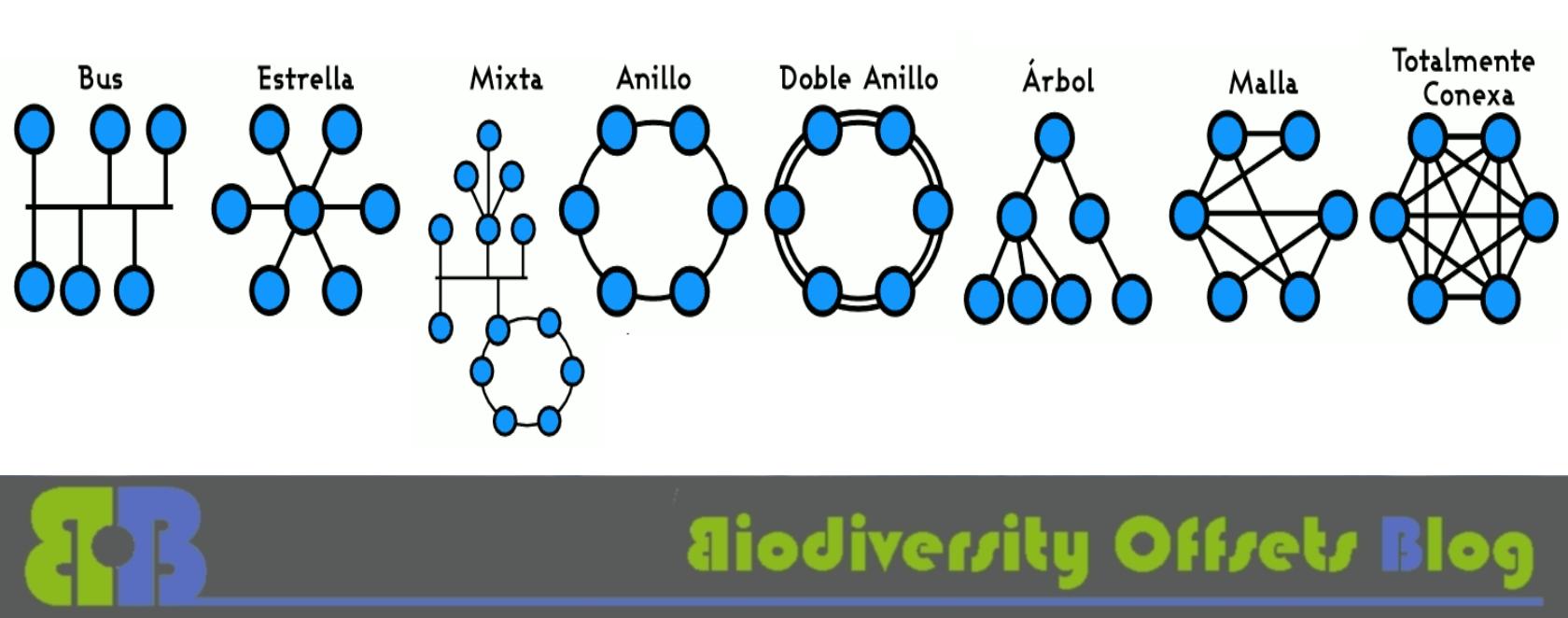 Biodiversity Offsets Blog Logo_hellgruen_network_1680