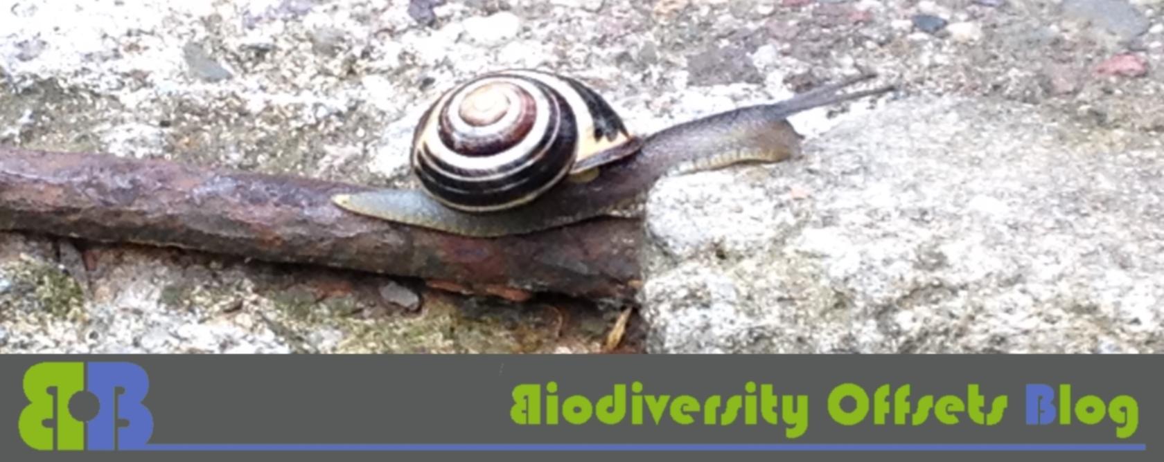 Biodiversity Offsets Blog Logo_hellgruen_schnecke_1680