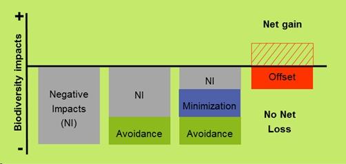 Mitigation Hierarchy
