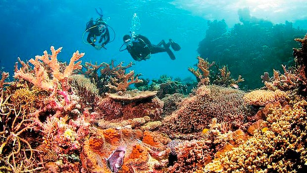 Controversy rages over the Great Barrier Reef. Photo: Tourism & Events  Queensland (source: http://www.smh.com.au/environment/abbot-point-dredging-approval-under-heavy-fire-20140905-10cqsu.html#ixzz3DViG1pqh)