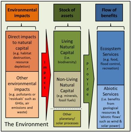 Natural capital 2