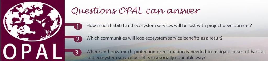 OPAL_questions