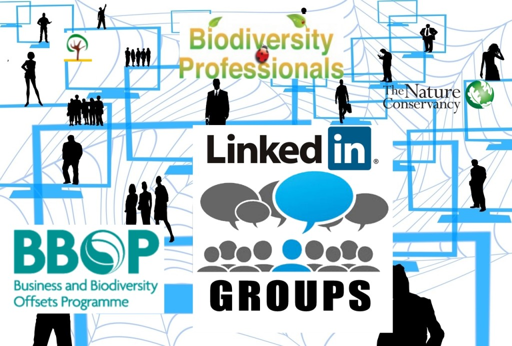 LinkedIn discussions