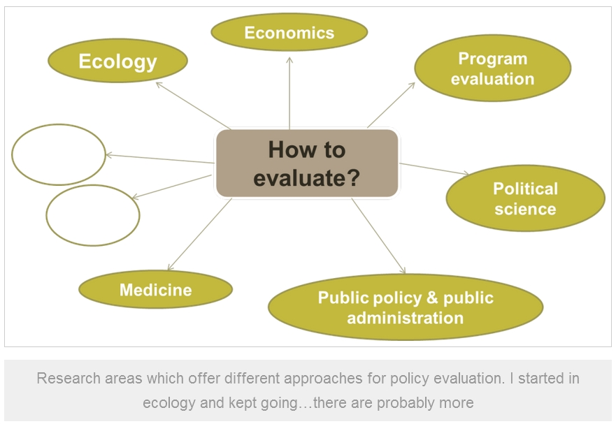 Megan Evans_2015_Research areas for policy evaluation