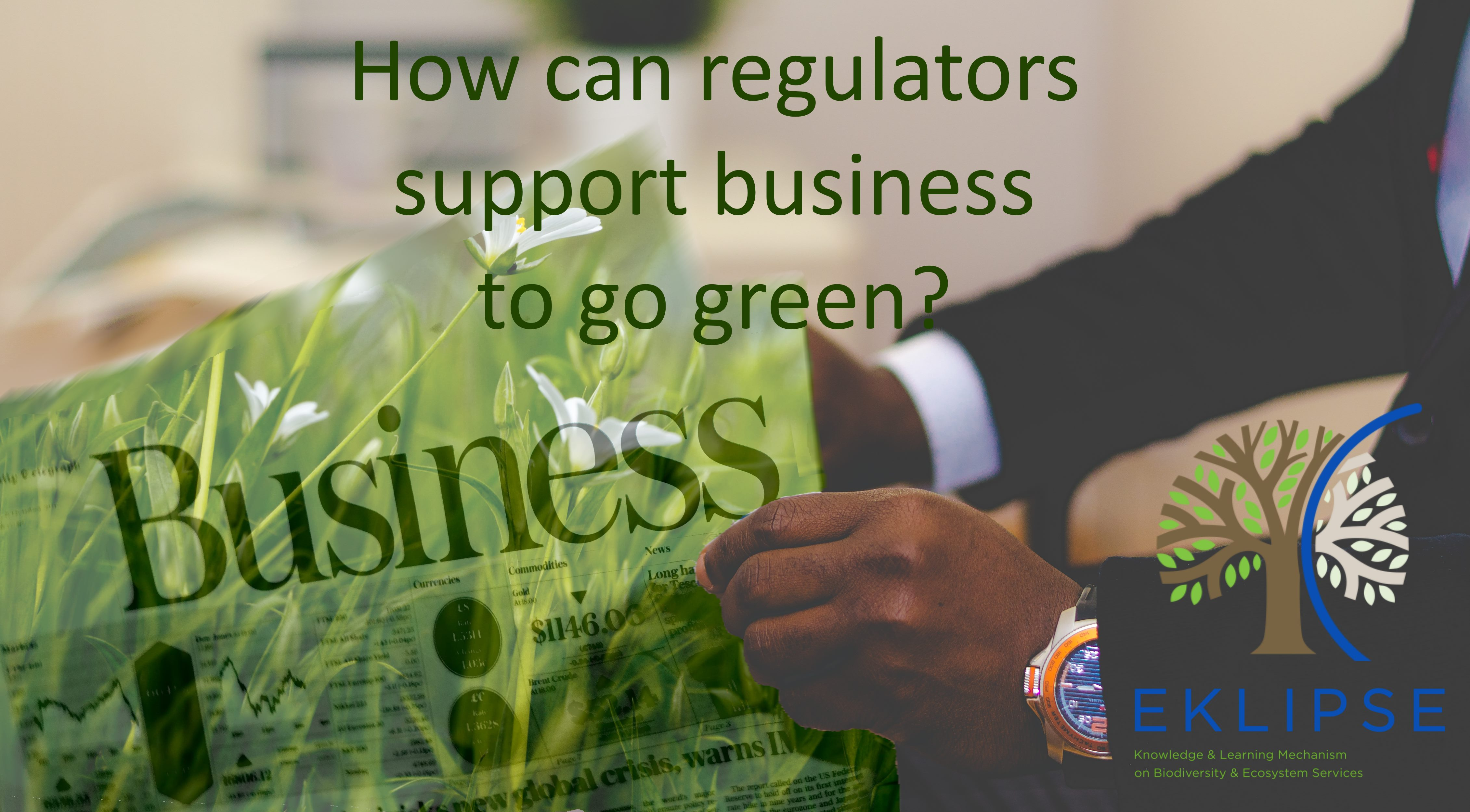 supporting business to go green_narrow_centered
